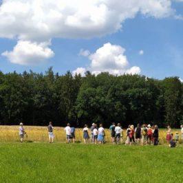 SoLaWi: Hoffeste bei unseren Landwirten